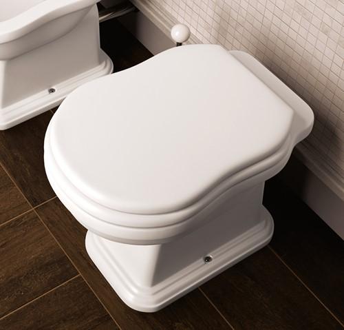 6010 Flaminia Efi staand toilet vloeraansluiting