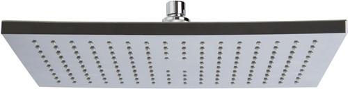 F2795/2CR ABS chromed showerhead