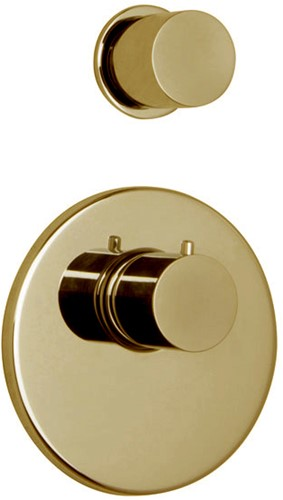 F3253X1OR Thermostatic built-in shower mixer